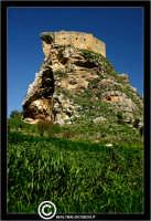Mussomeli. Castello di Mussomeli. Il castello dei baroni Chiaramonte. Castello Manfredonico.Innalzato con funzioni strategiche, ma anche politiche e di controllo, ad opera di Manfredi III di Chiaramontano, verso il 1370, il castello ha seguito la sorte del vicino borgo (alle falde del monte San Vito), successivamente feudo dei baroni Moncada, De Prades, Castellar, Campo, quindi dei Lancia dal 1549 al 1812.   - Reportage sui Castelli della Provincia di Caltanissetta -   - Mussomeli (2938 clic)