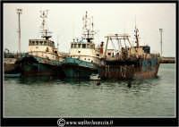 Licata: Porto di Licata. Tre vecchie imbarcazioni. Foto Walter Lo Cascio www.walterlocascio.it   - Licata (2275 clic)