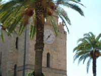 Duomo tra le palme.  - Monreale (2503 clic)