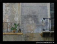 Pietraperzia: Apparizione del volto di San Padre Pio sulla parete di un'abitazione in Via Monaca. E' impressionante come oggi giorno, nel 2005, la gente creda ancora a queste pseudo apparizioni. Scambiare una macchia di umidità per il volto di un santo!! A dire il vero, a me sembra il viso di Babbo Natale, o ancor melgio di uno dei sette nani di Biancaneve. Foto Walter Lo Cascio www.walterlocascio.it  Walter Lo Cascio  - Pietraperzia (46573 clic)