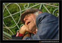 Catania: Dreams of an old man, uomo che dorme e sogna. Un anziano vecchietto riposa tranquillamente su di una panchina alla villa BEllini di Catania, sotto il caldo sole di una domenica di Dicembre.  - Catania (10573 clic)
