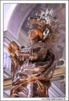 Caltanissetta. Cattedrale Santa Maria LA Nova. Interno. Statua dell'immacolata concezione.  - Caltanissetta (7627 clic)