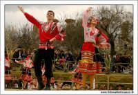 Agrigento. Festa del Mandorlo in fiore. Edizione 2006. Gruppi folkloristici si esibiscono durante la premiazione.   - Agrigento (1523 clic)