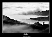 Caltanissetta. Nebbia. Foto di Walter Lo Cascio www.walterlocascio.it  - Caltanissetta (2318 clic)