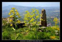 Agira. Il Castello Medioevale di Agira.  - Agira (2265 clic)