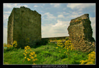 Agira. Il Castello Medioevale di Agira.  - Agira (2439 clic)