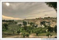 Siracusa: Parco Archeologico della Neapolis - Una visione d'insieme.  - Siracusa (4160 clic)