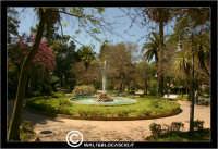 Caltanissetta. Villa Cordova. La fontana della Villa Cordova a Caltanissetta.  - Caltanissetta (3920 clic)