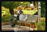 Caltanissetta. Villa Cordova. Anziano che legge il giornale alla Vilal Cordova di Caltanissetta.  - Caltanissetta (5001 clic)