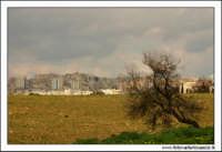 Agrigento. Landscape agrigentino. Colore  - Agrigento (1764 clic)