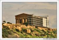Agrigento. Tempio della Concordia in restauro.  - Agrigento (3207 clic)