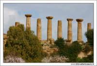 Agrigento. Tempio di Ercole  - Agrigento (2539 clic)