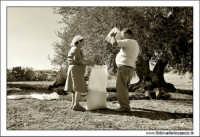Agira (ENNA). Raccolta delle olive. (foto 3)  30 Ottobre 2005  - Agira (3320 clic)