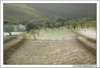 Agira (ENNA). Paesaggio rurale AGIRA Walter Lo Cascio