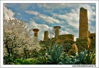 Agrigento. Tempio di Ercole.  - Agrigento (2472 clic)