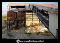 Caltanissetta: Reportage fotografico sulle miniere di Caltanissetta. Miniera Iuncio Tumminelli. Nastro trasportatore.  - Caltanissetta (1818 clic)