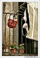 Castiglione di Sicilia. Il reggiseno appeso.  - Castiglione di sicilia (3847 clic)