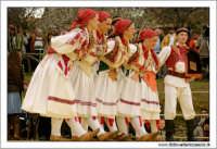 Agrigento. Festa del Mandorlo in fiore. Edizione 2006. Gruppi folkloristici si esibiscono durante la premiazione.   - Agrigento (1508 clic)