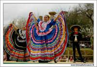 Agrigento. Festa del Mandorlo in fiore. Edizione 2006. Gruppi folkloristici si esibiscono durante la premiazione.   - Agrigento (1863 clic)