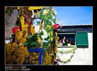 Mazzarino - Festa del SS. Crocifisso dell'Olmo. Signore dell'Olmo. Anno 2010. Foto Walter Lo Cascio. www.walterlocascio.it  - Mazzarino (3539 clic)