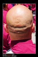 Mazzarino - Festa del SS. Crocifisso dell'Olmo. Signore dell'Olmo. Anno 2010. Foto Walter Lo Cascio. www.walterlocascio.it  - Mazzarino (4049 clic)