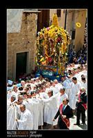 Mazzarino - Festa del SS. Crocifisso dell'Olmo. Signore dell'Olmo. Anno 2010. Foto Walter Lo Cascio. www.walterlocascio.it  - Mazzarino (7227 clic)