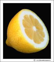 Agira: Sill-life. Limone #1.  - Agira (5298 clic)