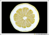Agira: Sill-life. Limone #2.  - Agira (5054 clic)