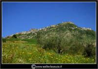 Agira. Prati verdi nella campagna di Agira. Sullo sfondo, il monte teja di Agira.  - Agira (3340 clic)