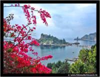Isolabella: Uno scorcio caratteristico dell'isola di Isolabella tra i Bouganvillae. Techne.  - Taormina (6704 clic)