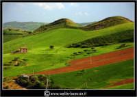 Agira. Campagna di Agira.  Foto Walter Lo Cascio www.walterlocascio.it   - Agira (3377 clic)