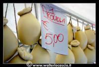 Vizzini: SAGRA DELLA RICOTTA E DEL FORMAGGIO. Edizione 2007. Provole a buon prezzo!  - Vizzini (1453 clic)
