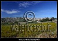 San Cataldo. Campagna di San Cataldo. Sullo sfonfo il paese. Foto di Walter Lo Cascio www.walterloc