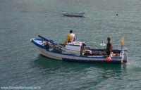 Pescatori nel Golfo di Castellammare  - Castellammare del golfo (2411 clic)