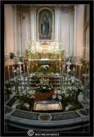 La Cattedrale di Caltanissetta.   - Caltanissetta (2785 clic)