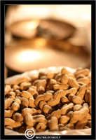 Le noccioline americane. Le arachidi  - Caltanissetta (4848 clic)