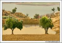 Regalbuto, Settembre 2005. Campagna rurale. Sullo sfondo il lago di pozzillo.  - Regalbuto (4184 clic)