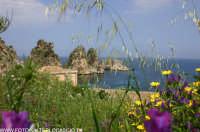 La tonnara di Scopello e i faraglioni(TP)  - Scopello (4364 clic)