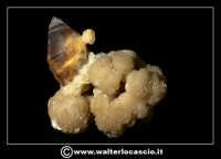 Caltanissetta: Reportage Fotografico sulle miniere. Minerali estratti dalle miniere siciliane. Collezione privata Sig. Gerlando Bennardo.  - Caltanissetta (1877 clic)