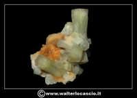 Caltanissetta: Reportage Fotografico sulle miniere. Minerali estratti dalle miniere siciliane. Collezione privata Sig. Gerlando Bennardo.  - Caltanissetta (1919 clic)