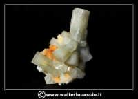 Caltanissetta: Reportage Fotografico sulle miniere. Minerali estratti dalle miniere siciliane. Collezione privata Sig. Gerlando Bennardo.  - Caltanissetta (1910 clic)