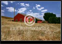 Raddusa. Campagna di Raddusa. La casa rossa fra i campi di grano.  - Raddusa (5896 clic)
