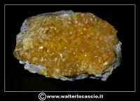 Caltanissetta: Reportage Fotografico sulle miniere. Minerali estratti dalle miniere siciliane. Collezione privata Sig. Gerlando Bennardo.  - Caltanissetta (2788 clic)