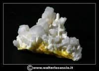Caltanissetta: Reportage Fotografico sulle miniere. Minerali estratti dalle miniere siciliane. Collezione privata Sig. Gerlando Bennardo.  - Caltanissetta (1913 clic)