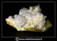 Caltanissetta: Reportage Fotografico sulle miniere. Minerali estratti dalle miniere siciliane. Collezione privata Sig. Gerlando Bennardo.  - Caltanissetta (1953 clic)