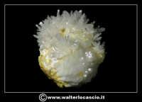 Caltanissetta: Reportage Fotografico sulle miniere. Minerali estratti dalle miniere siciliane. Collezione privata Sig. Gerlando Bennardo.  - Caltanissetta (1894 clic)