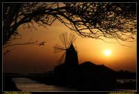 Marsala: Le Saline al Tramonto. La strada che da Trapani conduce a Marsala, costeggiando la laguna che accoglie Mozia, ý fiancheggiata da saline che offrono una vista bellissima: gli specchi d'acqua suddivisi da sottili strisce di terra formano una scacchiera irregolare e multicolore. Foto Walter Lo Cascio www.walterlocascio.it  - Marsala (3059 clic)