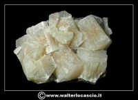 Caltanissetta: Reportage Fotografico sulle miniere. Minerali estratti dalle miniere siciliane. Collezione privata Sig. Gerlando Bennardo.  - Caltanissetta (2003 clic)