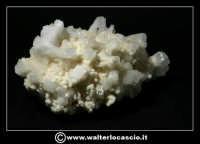 Caltanissetta: Reportage Fotografico sulle miniere. Minerali estratti dalle miniere siciliane. Collezione privata Sig. Gerlando Bennardo.  - Caltanissetta (1901 clic)