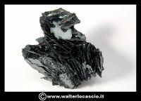 Caltanissetta: Reportage Fotografico sulle miniere. Minerali estratti dalle miniere siciliane. Collezione privata Sig. Gerlando Bennardo.  - Caltanissetta (2154 clic)